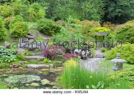 rock garden with fern japanese lantern shrubs and trees design by