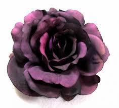 eggplant purple hair color in 2016 amazing photo haircolorideas org