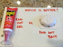 How To Kill Ants In The Kitchen by Raid Ant Gel Vs Raid Ant Bait Which Is Better Review Youtube