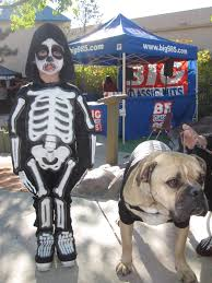 Martha Stewart Dog Halloween Costumes Travelin U0027 Jack U0027s Dog Blog October 2011