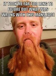 Funny Beard Memes - ginger beard meme share its funny