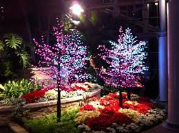 christmas lights show picture of lewis ginter botanical garden