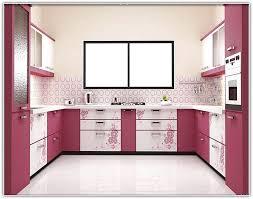 Kitchen Cabinets Modular Modular Kitchen Cabinets India Home Design Ideas Modular Home