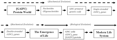 life free full text evolutionary steps in the emergence of