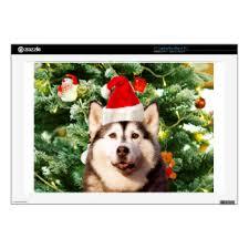 siberian husky laptop macbook skins zazzle