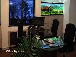 Fish Tank Reception Desk Office Aquarium 1234 Jpg