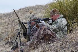 Coyote Hunting Lights Perfect Predator Hunting Setups For Two Hunters Petersen U0027s Hunting