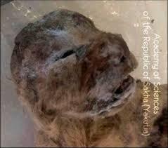 frozen cave lion cubs ice age siberia lion cub
