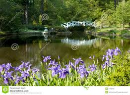 japanese zen garden royalty free stock image image 5113256