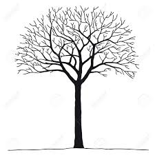3 561 bare tree stock vector illustration and royalty free bare