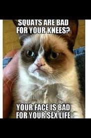 Do You Even Squat Meme - 126 best memes images on pinterest funny pics jokes and chistes