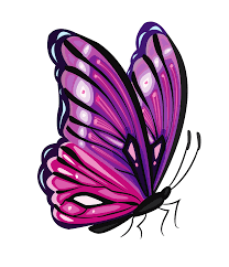 purple butterfly png clipart picture gallery yopriceville
