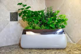 trendspot planters and unique garden accessories
