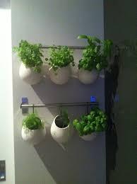 herb garden indoor indoor vertical herb garden design decoration