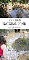 best 25 natural pond ideas on pinterest natural pools natural