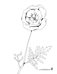 lily of the valley coloring pages hellokids com