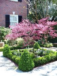 garden small trees exhort me