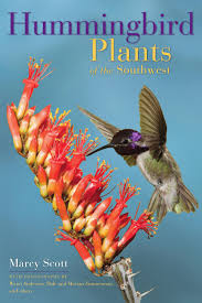 hummingbird plants of the southwest book excerpt by treasure