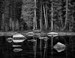 Image result for ansel adams photography
