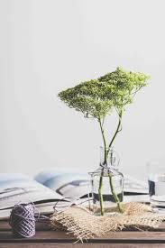 Zen Interior Design Bial