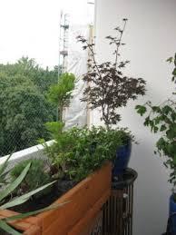 katzenschutz balkon balkon geländer unbrauchbar gartenplanung gartengestaltung