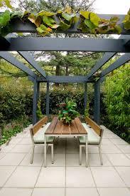 Grape Vine Pergola by Contemporary Backyard Patio Patio Contemporary With Pergolas