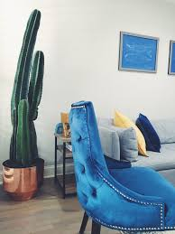 tufted chairs and cactus hairs home decor taigen tali