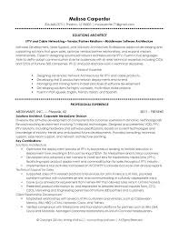Sales Support Resume Samples by 166 Best Resume Templates And Cv Reference Images On Pinterest