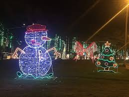 where can you buy christmas lights commercial grade outdoor christmas lights fresh where to buy blow