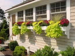 window box planter ideas app ranking and store data app annie