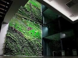 Indoor Vertical Gardens - 10 indoor vertical gardens for green living designbuzz