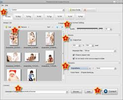 converter raw how to batch convert camera raw images to jpeg