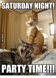Saturday Night Meme - saturday night party steemit