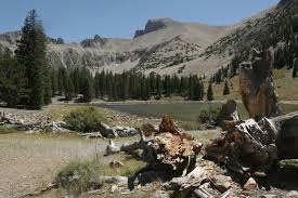 Great Basin National Park Map Hiking Wheeler Peak In Great Basin National Park Nevada