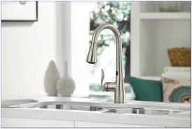 hands free kitchen faucet kohler faucets home design ideas