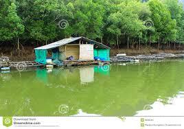 good coastal home plans 8 mini house stone mountain mangrove