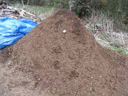 sawdust grass clipping debacle advice needed composting forum