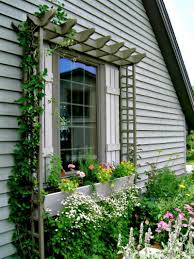 window trellis gardening pinterest window gardens and yards