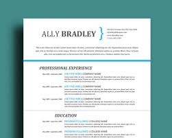 Template For Professional Resume Professional Resume Template Cover Letter U0026 References Page