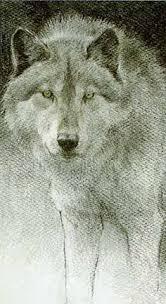 robert bateman paintings lithograph wolf pair in winter