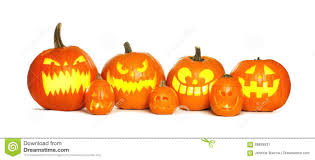 row of halloween jack o lanterns over white stock photo image