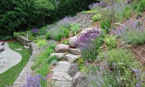 Landscaping Ideas For A Sloped Backyard Landscaping On A Hillside Steep Slope Arlington Ma A Steep And