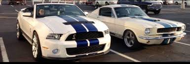 performance white vs oxford white the mustang source ford