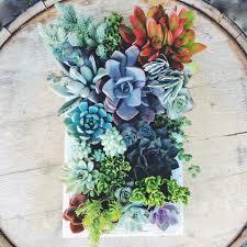 making a vertical succulent garden home decorations insight