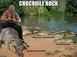 Crocodile Meme - rock and roll imgflip