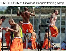 Bengals Memes - cincinnati bengals meme nfl apparel nfl team shirts die hard