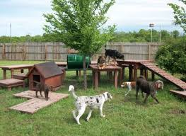 Backyard Ideas For Dogs Dog Backyard Playground Sweet Dreams Doghouse Home I Will