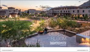 desert bloom landscape architecture magazine