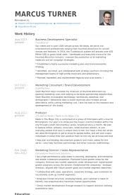 Business Development Resumes Business Development Specialist Resume Samples Visualcv Resume