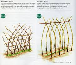 i am thinking of a more natural trellis vs the metal fence hoop
